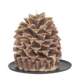 Aspen bay pineapple-cinnamon beignet pinecone