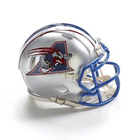 Riddell Sports MINI REPLICA HELMET