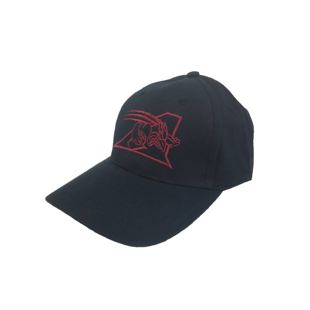 Sports Experts CASQUETTE ALOUETTES BASIC