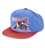 Mitchell and Ness BIG ALS HAT