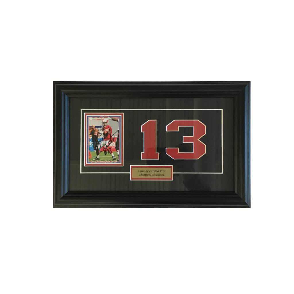 FRAME SHOPPE ANTHONY CALVILLO FRAME 2