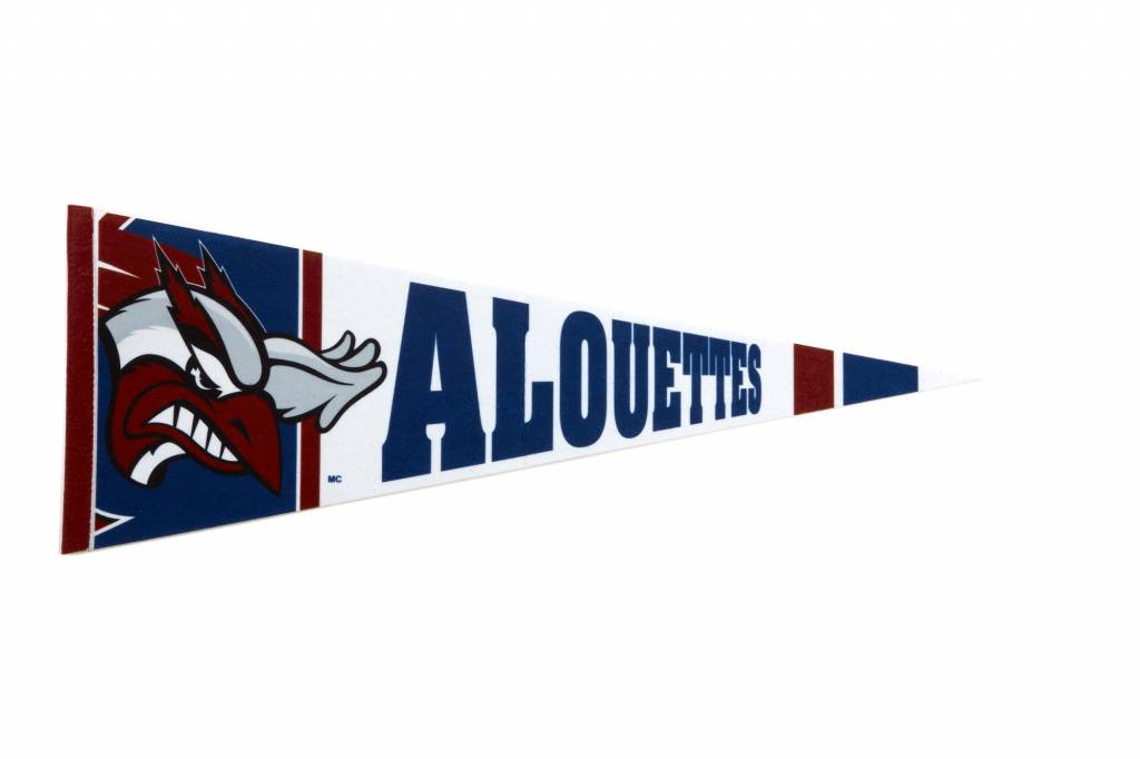 Hunter FANION ALOUETTES