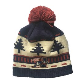 Adidas BLIZZARD TUQUE