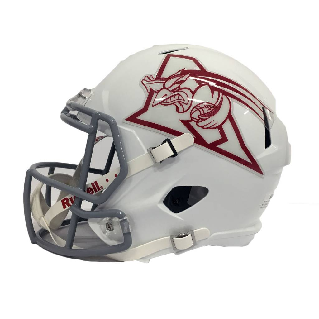 Riddell Sports LARGE REPLICA BIRD HELMET