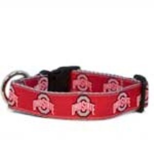 All Star Dog All Star Dogs NCAA Collar