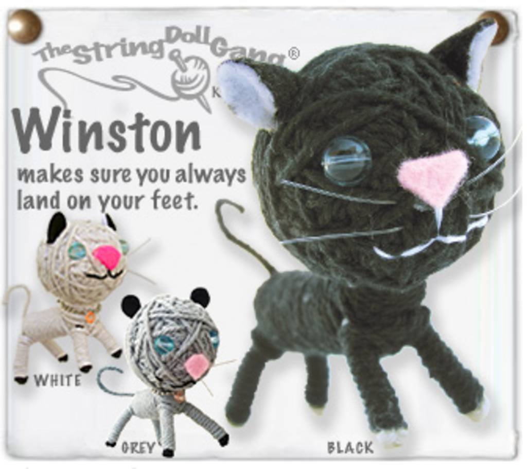 Kamibashi Winston Cat