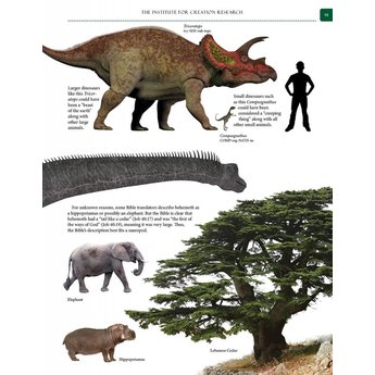 Guide to Dinosaurs