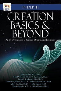 Creation Basics and Beyond