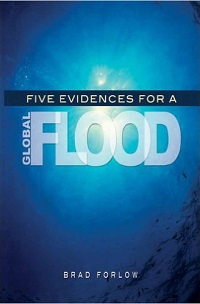 Five Evidences for a Global Flood