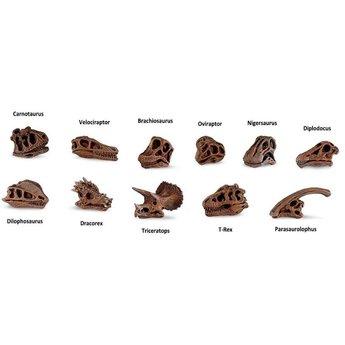 Dinosaur Skulls TOOB