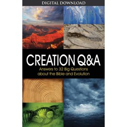 Creation Q&A - eBook