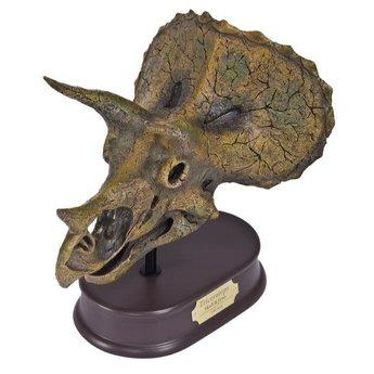 Triceratops Skull Model