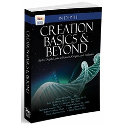 Creation Basics & Beyond