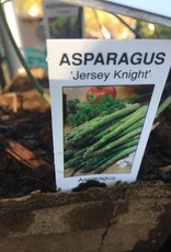 Asparagus, Jersey Knight, Cow Pot