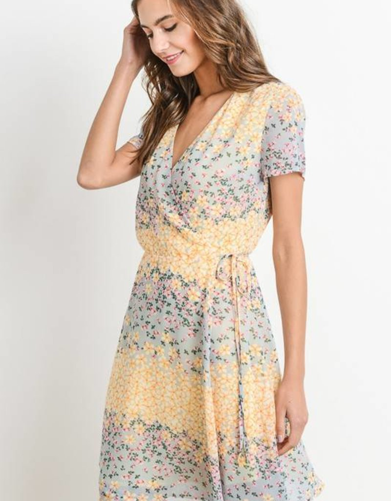 Daisy Print Wrap Dress