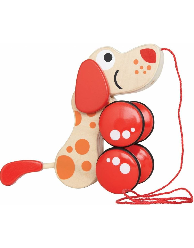 Walk-A-Long Puppy by Hape