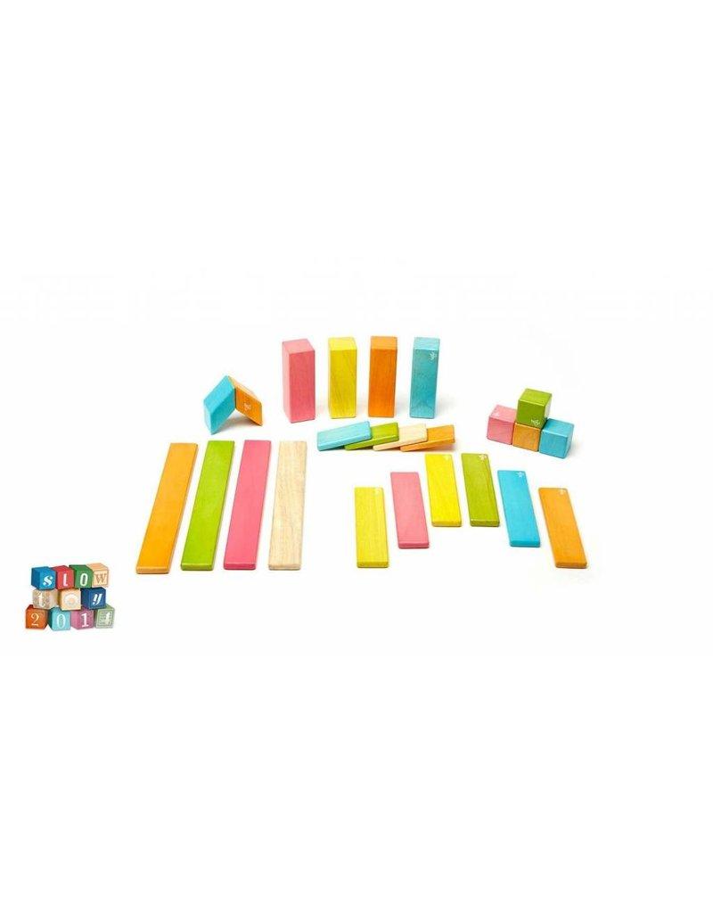 Tegu Magnetic Wooden Blocks Set - Tints