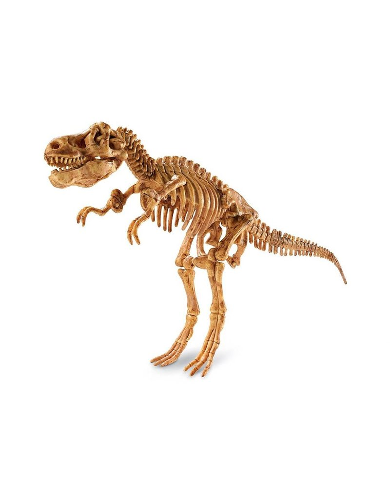 Dig It Up! Tyrannosaurus Rex by MindWare