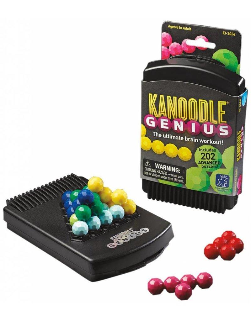 Kanoodle Challenge Game