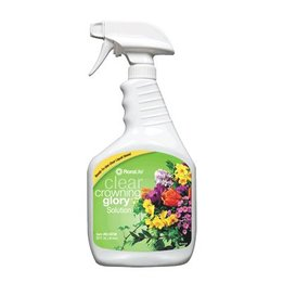 Floralife® Crowning Glory