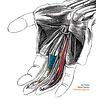 Finger Stretch Device