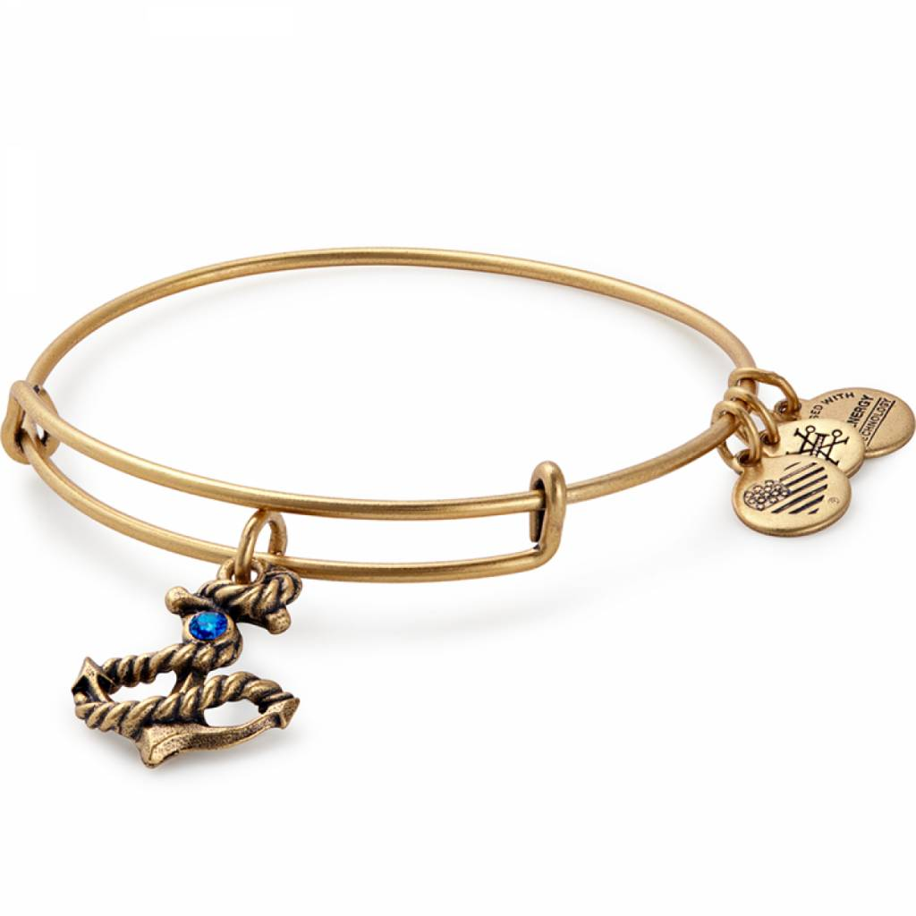 Anchor Charm Bangle - Rafaelian Gold - A17EB72RG