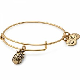 Pineapple Charm Bangle - Rafaelian Gold - A17EB26RG