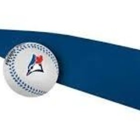 Rawlings Rawlings MLB Toronto Blue Jays foam bat and ball set