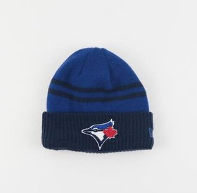 New Era New Era Arctic Trim Toronto Blue Jays Hat