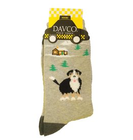 Davco Ladies Bernese Mountain Dog Socks Camel