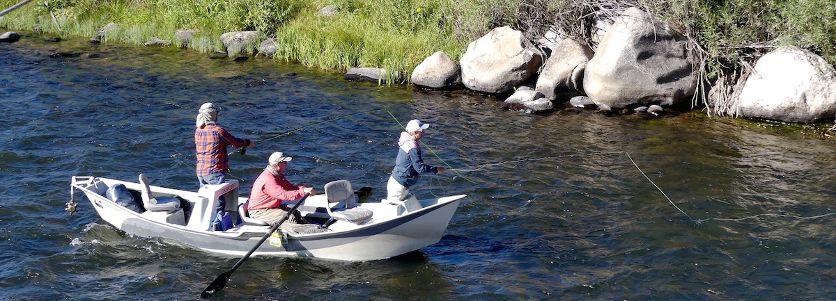 Madison river fly fishing trips w best montana fishing for Gallatin fishing report