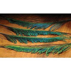 Hareline Peacock Sword-4 Pack