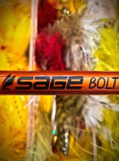 Sage Bolt Fly Rod