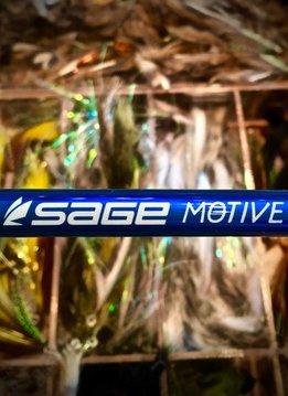 Sage Motive Saltwater Fly Rod