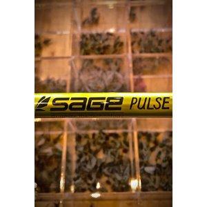 Sage Pulse Fly Rod