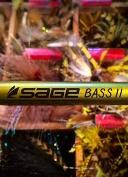 Sage Bass II Fly Rod