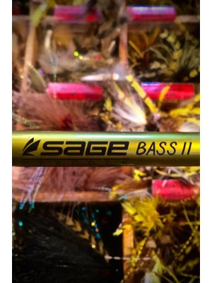 Sage Bass II Fly Rod