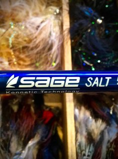 Sage Salt Series Fly Rod