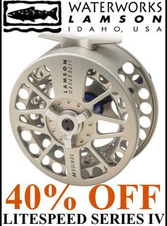 Waterworks-Lamson Litespeed IV Reel