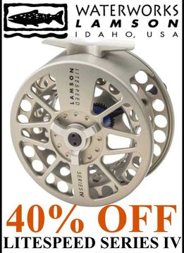 Waterworks-Lamson Litespeed IV Reel #3.5