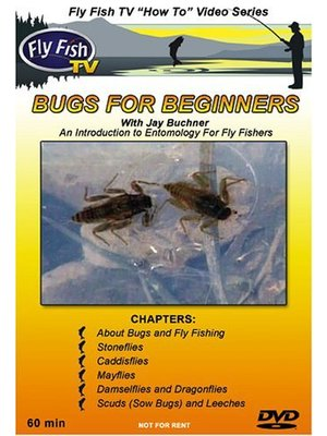 DVD-Bugs for Beginners-Buchner