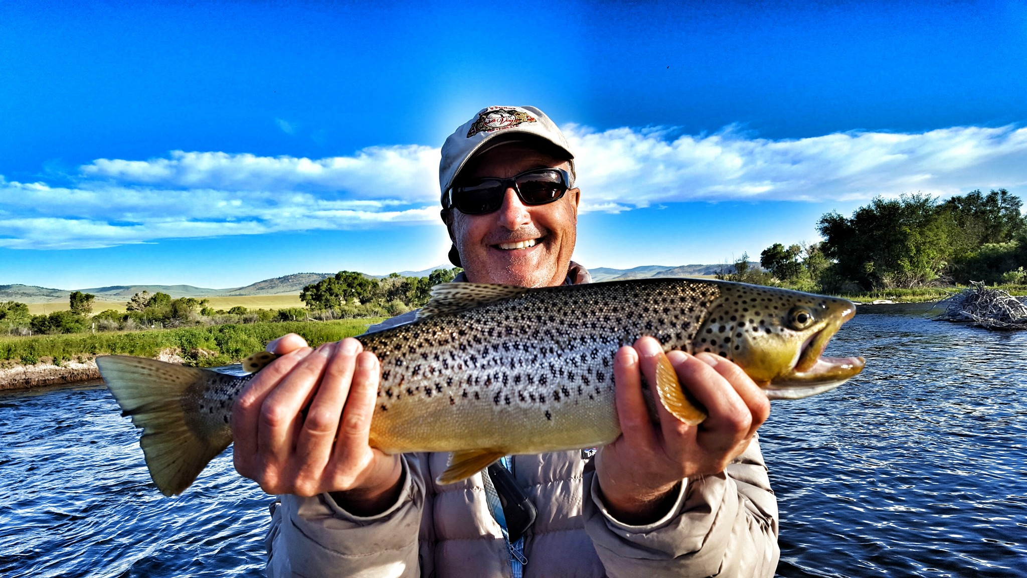 Madison river hatches fly fishing the madison river mrfc for Hatch fly fishing