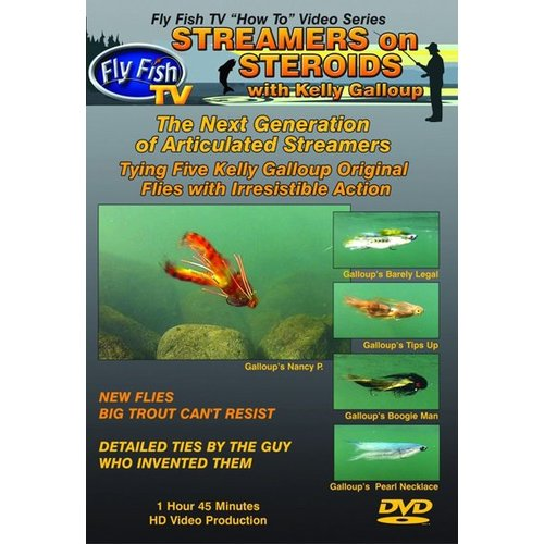 DVD-Streamers on Steroids - Galloup
