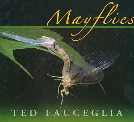 Book-Mayflies- Fauceglia
