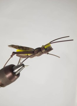 Fly fishing flies for sale clearance flies discount for Fly fishing sale