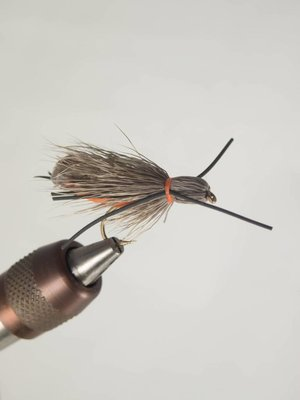 Stalcup's Adult Salmonfly