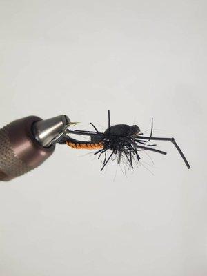 Stonefly Cory