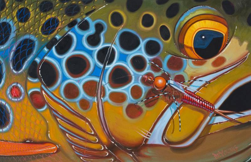 """Deyoung Brown Trout Rubberlegs Canvas Print 36x24"""""""