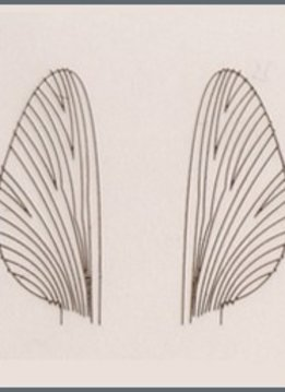 Renzetti Mayfly Wing Material