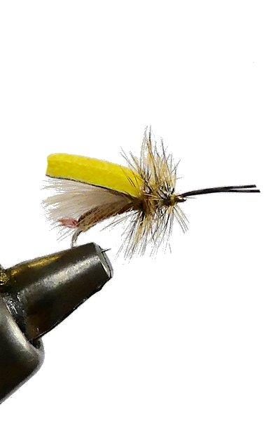 Foam Wing Yellow Sally #14